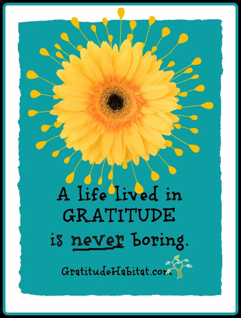 gratitude habitat