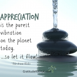 Appreciation Is The Purest Vibration