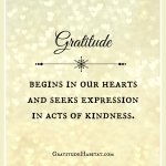 Gratitude - Acts Of Kindness