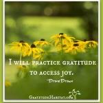I Will Practice Gratitude
