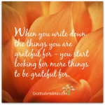 Write What You Are Grateful For