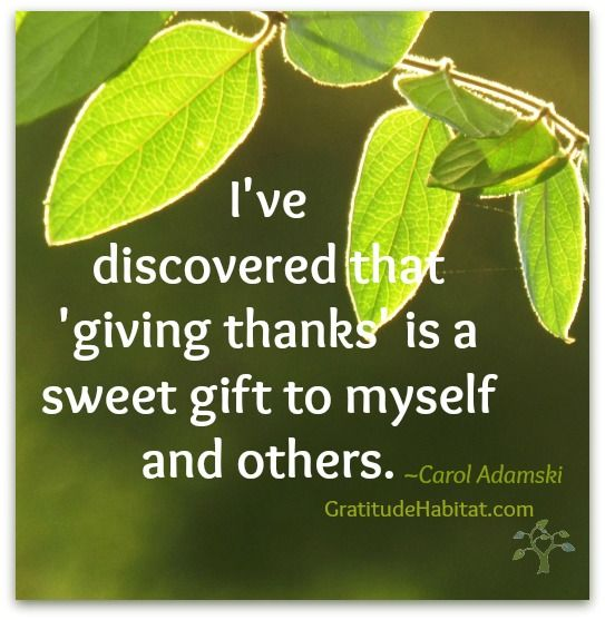 Thank You Quotes For Giving Gifts: Gift Gratitude At Gratitude Habitat