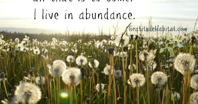 I live in abundance.
