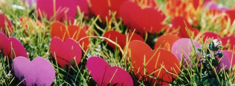 Hearts in grass by Julien