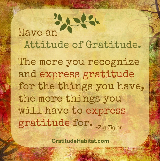 Image result for Have an attitude of gratitude