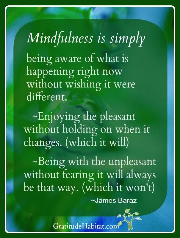 Gratitude Habitat | Living In Gratitude: Mindfulness