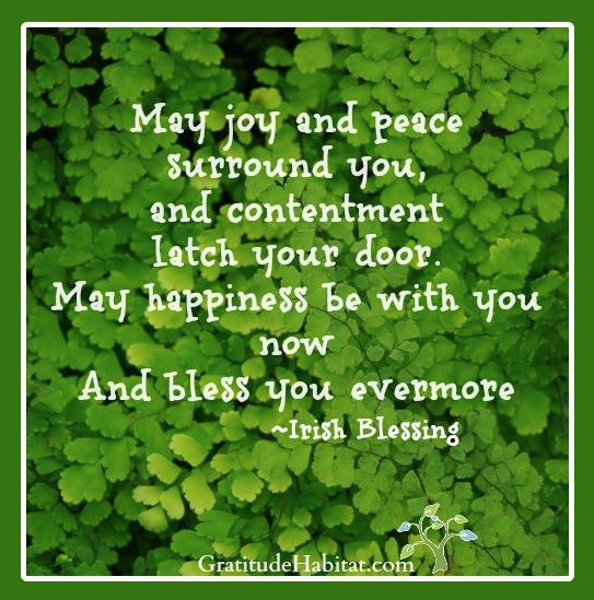 Irish Blessing: May Peace and Joy Surround You   Gift Gratitude at ...