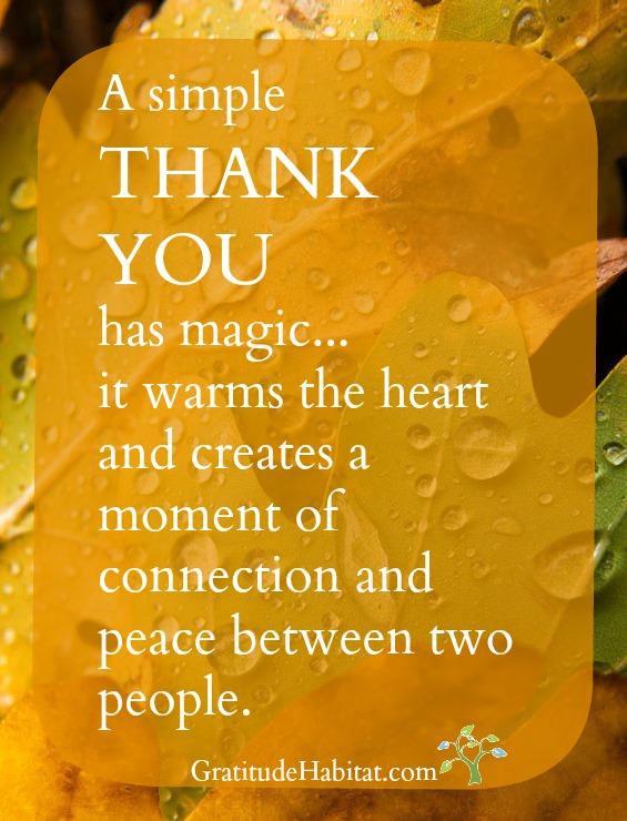 Gratitude Habitat | Living In Gratitude: 'Thank You' Has Magic