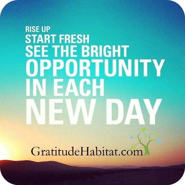 Rise up start fresh